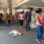 Ordena SCJN cierre de negocios no esenciales en Cuernavaca