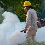 Repuntan casos de dengue en Morelos, en cinco municipios