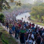 Migración, una roca en el camino